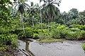 Plage de São João dos Angolares (São Tomé) (6).jpg