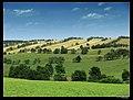 Planiny nad obcí Fojtovice - panoramio.jpg