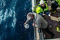 Planktonivõrgu korjamine.jpg