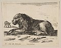Plate 5- reclining lion, from 'Various animals' (Diversi animali) MET DP817863.jpg