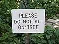 Please do not sit on tree sign at Temple Square.jpg