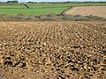 Ploughed Field - geograph.org.uk - 510278.jpg