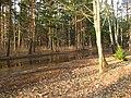 Pludi druvciema 2011 - panoramio (58).jpg