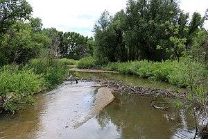 Plum Creek (Douglas County, Colorado) - The creek just before it empties into Chatfield Reservoir