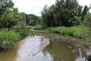 Plum Creek (Douglas County, Colorado)