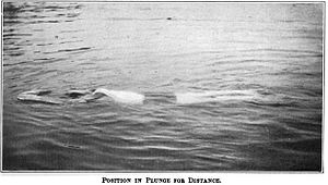 Plunge for distance - Competitor floating after plunging (1918)