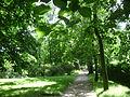 Poland. Warsaw. Śródmieście. Royal Baths Park 002.JPG