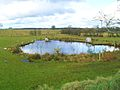 Pond at Balleny - geograph.org.uk - 1728391.jpg