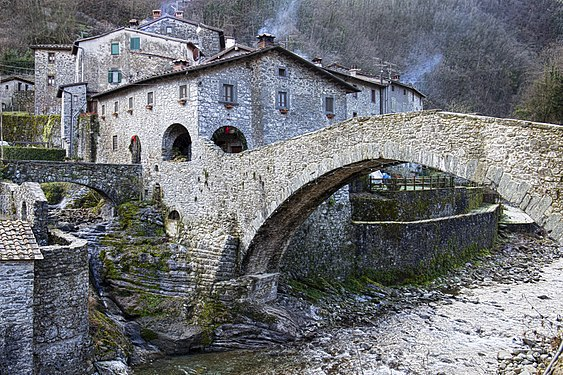 Ponte della dogana, customs bridge.jpg