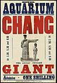Poster; Royal Aquarium ; Chang, the great Chinese giant Wellcome L0063557.jpg