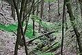 Potok z Chroustova-alibaba - panoramio.jpg