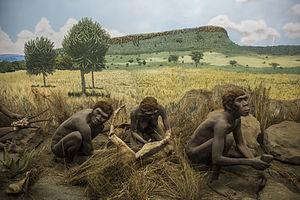 National Museums of Kenya - Prehistory