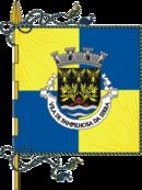 Bandeira de Pampilhosa da Serra