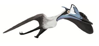 1815 in paleontology - Pterodactylus'