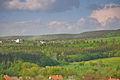 Pylující lesy nad Velenovem, okres Blansko.jpg