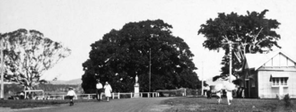 Tewantin, Queensland - Tewantin War Memorial, Town Square, circa 1931