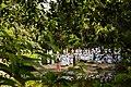 Quilombo dos Palmares é palco de reflexão e festa no 20 de novembro (30354992754).jpg