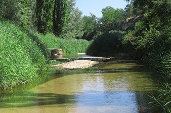 Río Cega 2.jpg