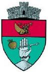 ROU SV Vatra Moldovitei CoA.png