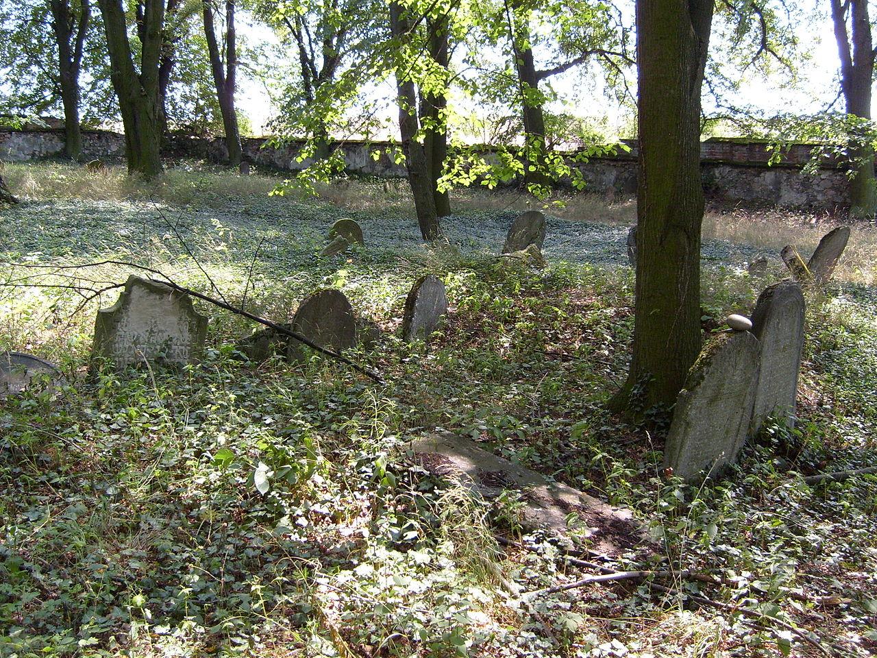 Radnice-Jewish cemetery5.jpg