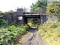 Rail bridge over footpath - geograph.org.uk - 564382.jpg