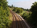 Railway from Dinnaton bridge - geograph.org.uk - 233308.jpg