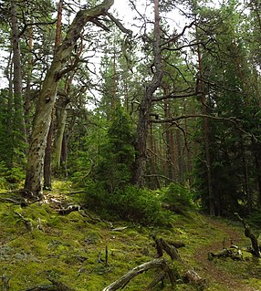 Kõpu Nature Reserve