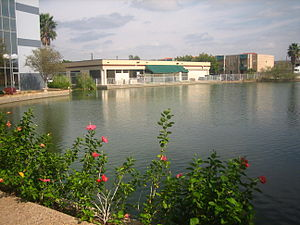 Falcon International Bank - The reflecting pool at Falcon Bank in Laredo