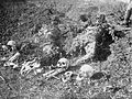 Remains of Vranje Massacre Victims.jpg