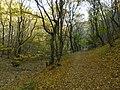 Remete Valley 01.jpg