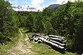 Reserva Villarrica 2.jpg