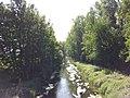 Rheinniederungskanal bei Philippsburg - geo.hlipp.de - 26674.jpg