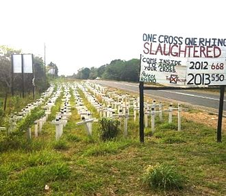 Poaching - Memorial to rhinos killed by poachers near St Lucia Estuary, South Africa