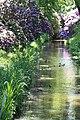 Rhododendronpark Bremen 20090513 022.JPG