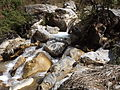 Rishikesh harikempty fallsdwar (399).JPG