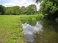 River Mimram near Archer's Green - geograph.org.uk - 1318985.jpg