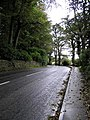 Road at Ballyshasky - geograph.org.uk - 258363.jpg