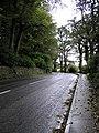 Road at Ballyshasky - geograph.org.uk - 258363.jpg