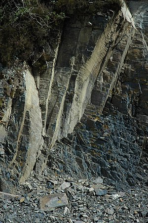Rock strata Rock strata beside a forestry road...