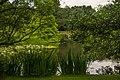 Royal Botanic Gardens, Kew - panoramio (2).jpg