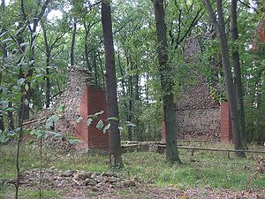 Abandoned village - The remains of a fieldstone church in Dangelsdorf, Germany, from the 14th century