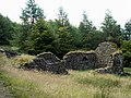 Ruins of Blaen Fflur Farm House - geograph.org.uk - 518510.jpg