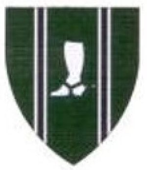 Natal Mounted Rifles - SANDF Natal Mounted Rifles emblem