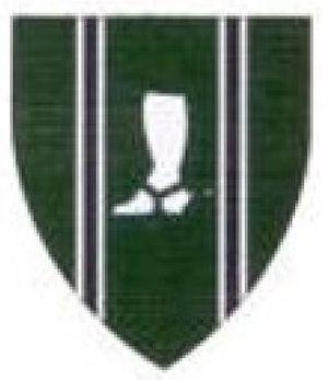 Natal Mounted Rifles - SANDF Natal Mounted Rifles emblem
