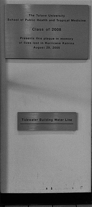 Tulane University School of Public Health and Tropical Medicine - Water Line