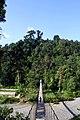 Safeguarding the Biodiversity of Gunung Leuser National Park Forests.jpg