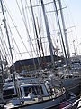 Sailing DSC03476.JPG