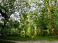 Saint-Jean-aux-Bois (60), étang de Sainte-Perrine 2.jpg