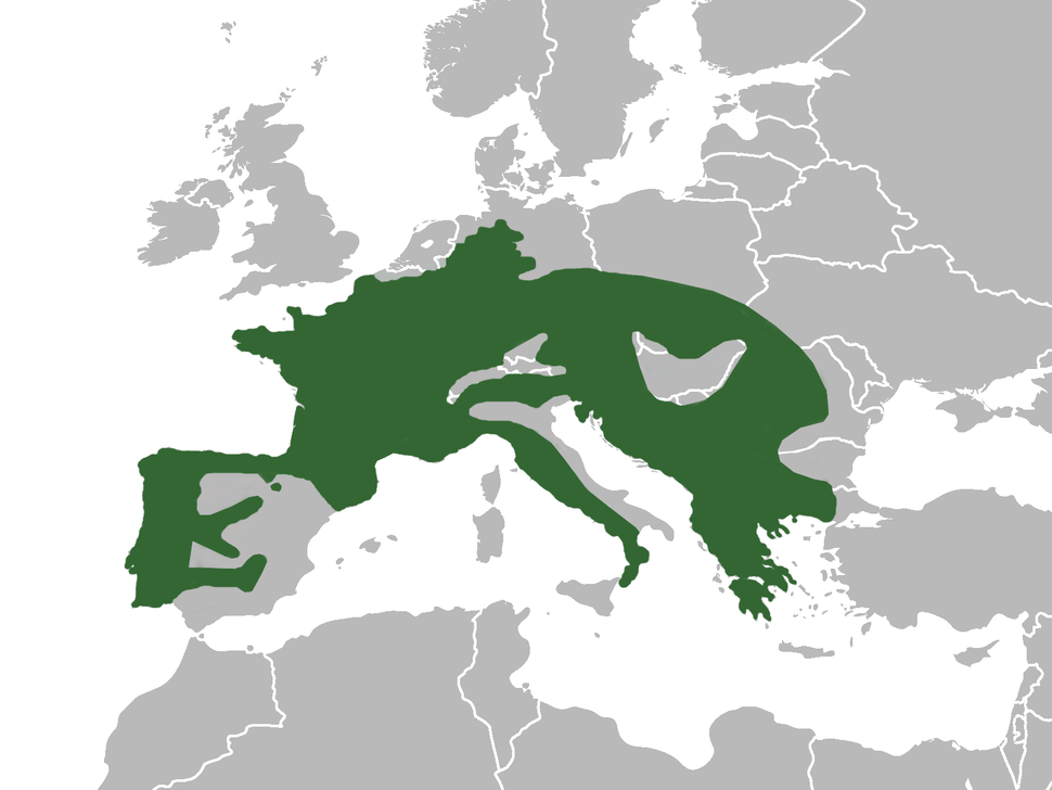 Distribución en Europa