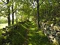 Salers , pays de pierre et de grands espaces, situé entre Dordogne et Puy-Mary - panoramio (18).jpg